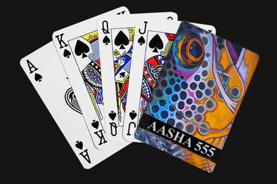 Cheating Playing Cards Device in Delhi